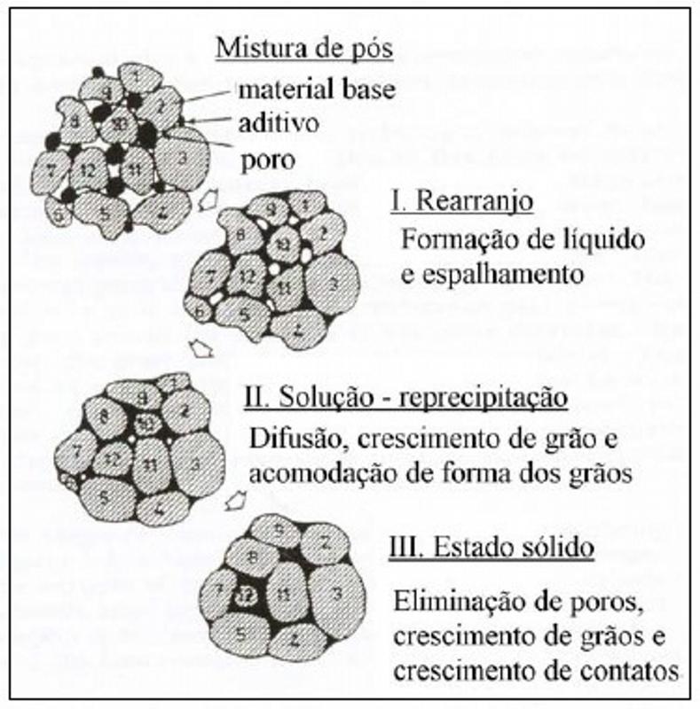 Etapas da sinterização por fase líquida