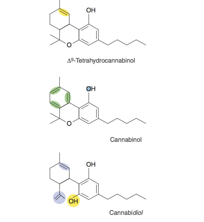 Compostos das plantas canabinoides: delta-9-tetrahidrocanabidiol (D9 -THC), canabinol (CBN), canabidiol (CBD). Canabinoides exibem marcados a relação de estrutura e atividade. A parte estrutural marcada do CBN que confere um adicional de uma dupla ligação de carbono o faz ter 90% menos atividade psicoativa que o THC, enquanto o CBD por ter um adicional grupo hidroxil remove completamente a atividade psicoativa.
