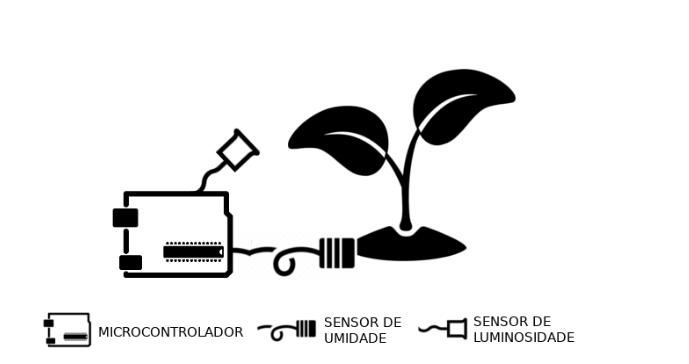 Representação esquemática do sistema de irrigação