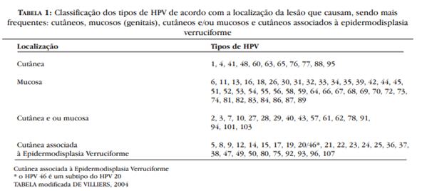 Classificação dos tipos de vírus HPV