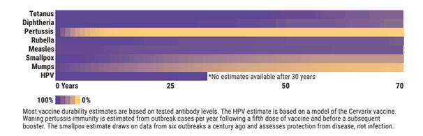 Durabilidade vacina
