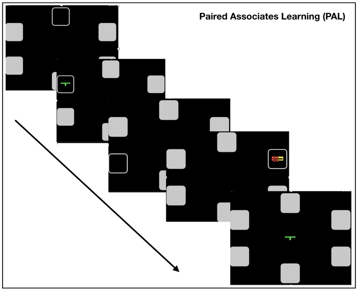 Paired Associates Learning (PAL), ou Aprendizado Pareado Asociado.