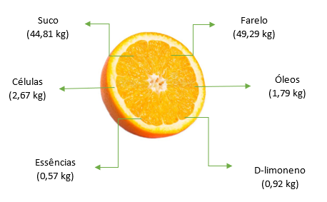 Rendimento teórico de produtos e subprodutos da laranja a partir de 100 kg
