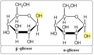 Glicose ciclica