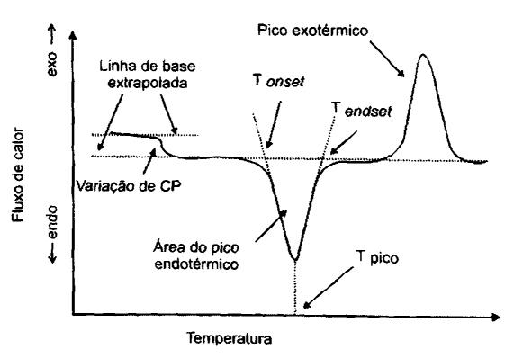Curva de DSC de fluxo de calor