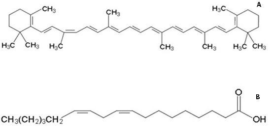 (A) β-caroteno e (B) ácido linoleico