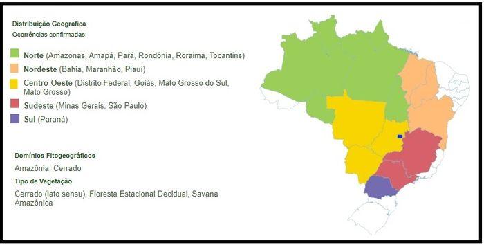 Ocorência de Xylopia aromatica (Annonaceae) no Brasil