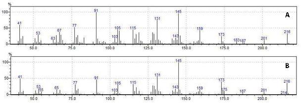 Espectros de massas dos compostos majoritários não identificados: (A) ni-39 e (B) ni-43.