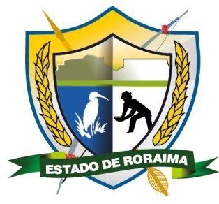 Logo Institucional -  - GOVERNO DO ESTADO DE RORAIMA - SECRETARIA DE ESTADO DA SAÚDE DE RORAIMA -SESAU