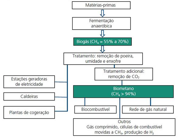Processo de fabricação do biogás