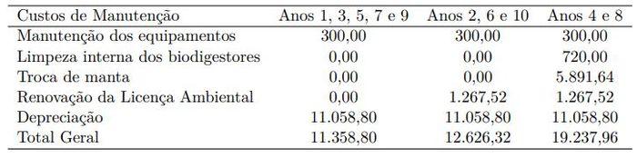 Discriminação dos custos de manutenção do biodigestor