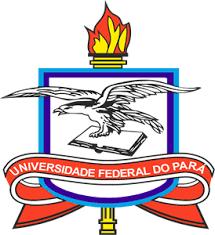 Logo Institucional - UFPA - UNIVERSIDADE FEDERAL DO PARÁ